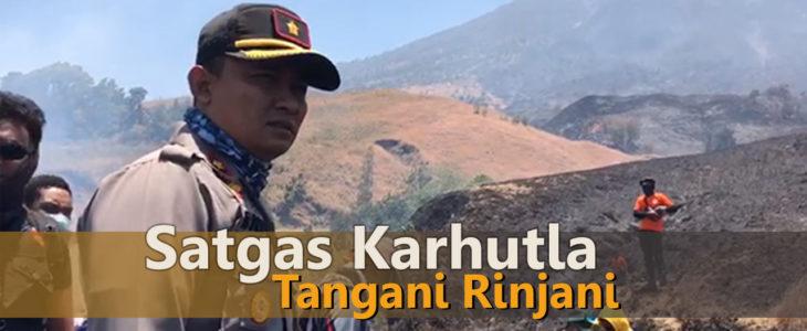kebakaran hutan di rinjani, karhutla di lombok timur, pulau lombok