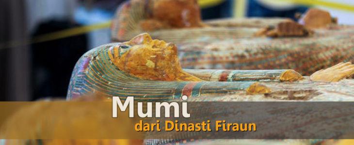 penemuan dan fakta unik pembuatan mumi di mesir, viral