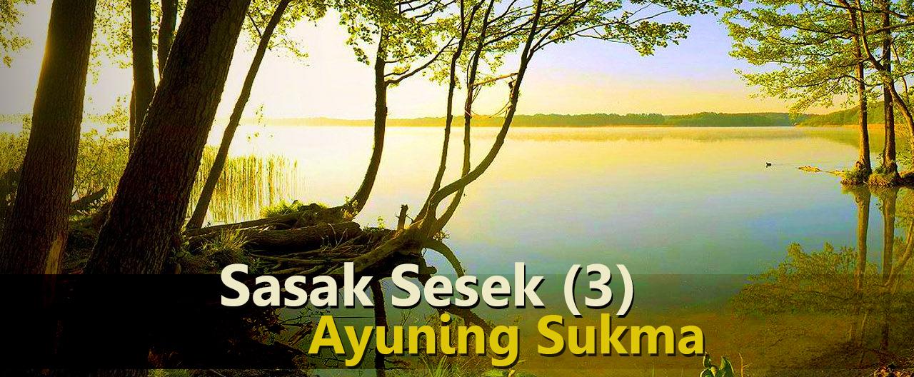 Sasak yang Sesek (3): Ayu Ning Sukme