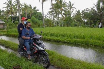 kunjungan gubernur ntb, zulkiflimansyah di lenek, kecamatan lenek, lombok timur