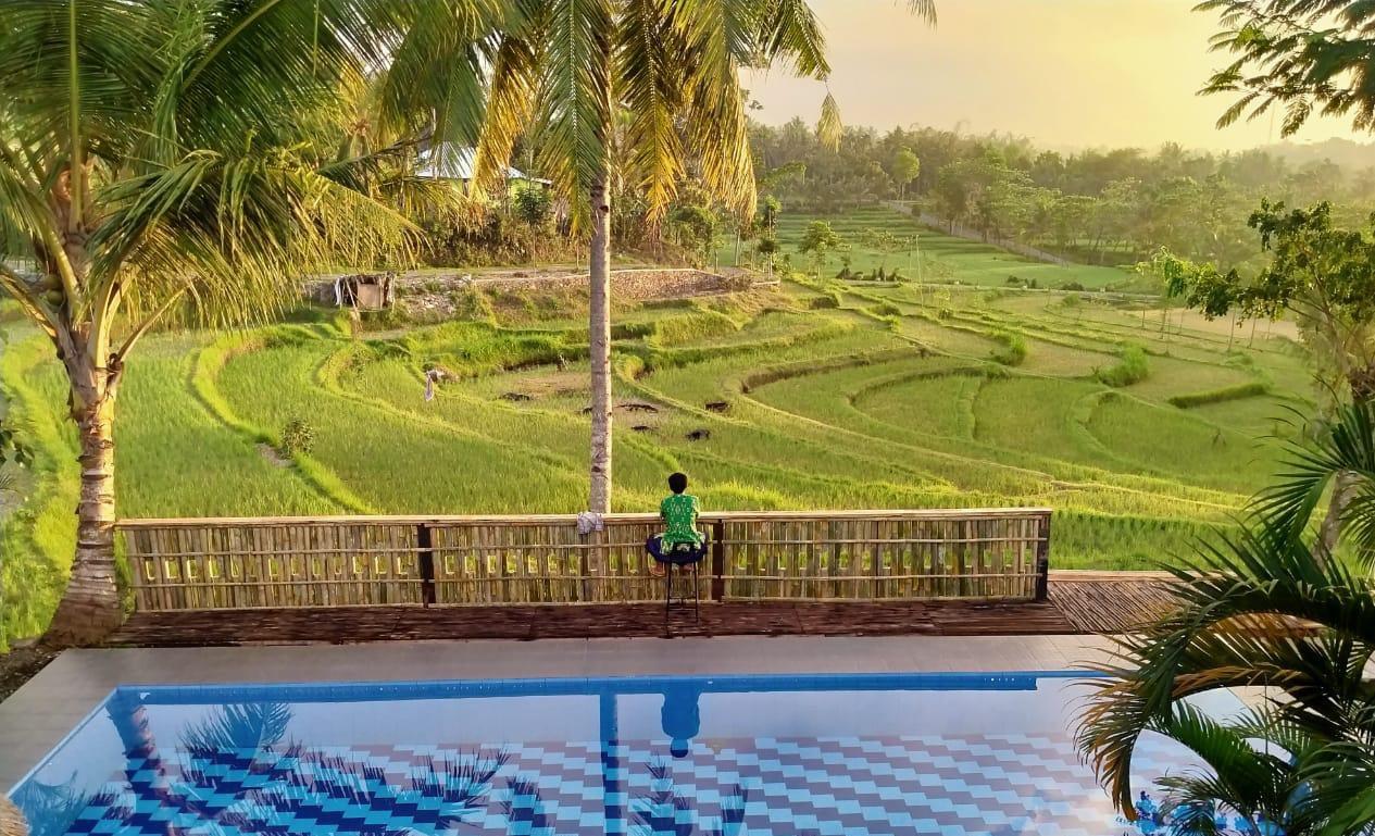 peraja coffee loyok, obyek wisata desa, di lombok timur